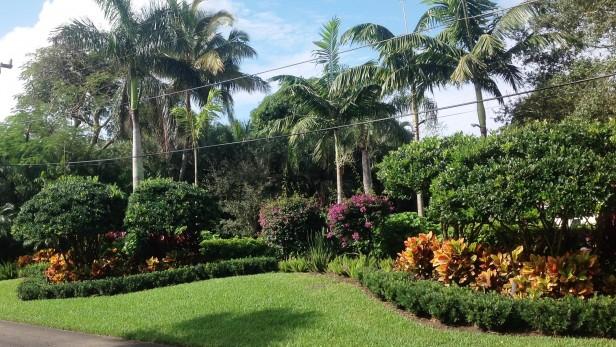 187 Landscape Design Ideas