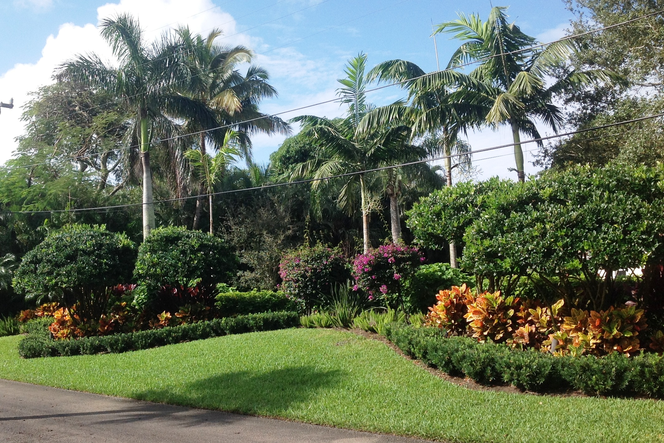 Landscape design ideas for Florida landscape design