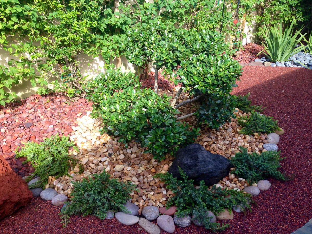 Asian garden for jupiter florida by eileen g designs for Japanese garden features