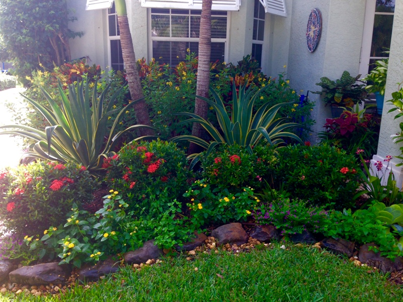 Garden Designs For Front Yards Markcastroco
