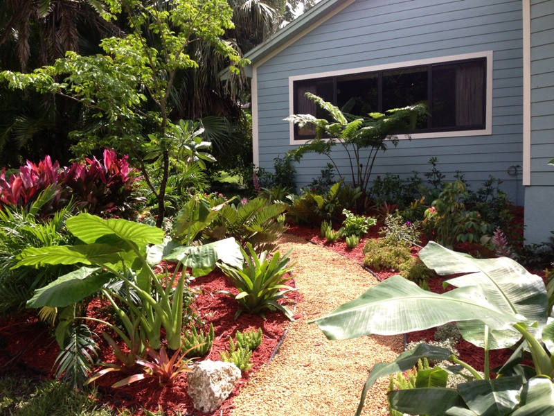 Back yard landscape design eileen g designs for Garden designs for sun