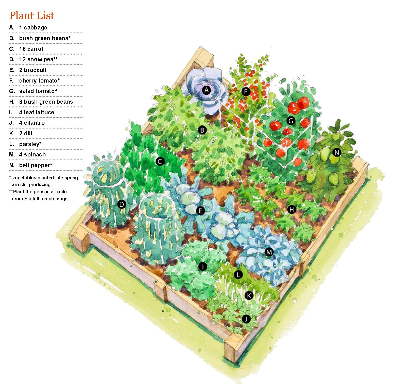 Fall Vegetable Garden Ideas Part - 17: Fall Garden Plan